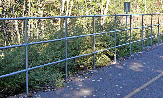 Walking Path Railing