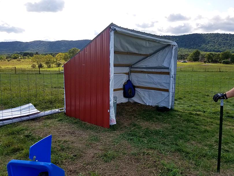 DIY Animal Shelter